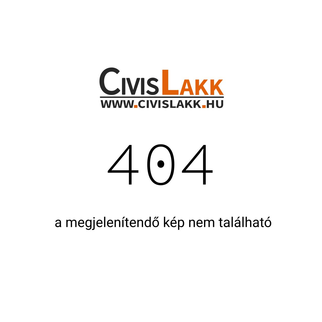 Terostat 8596 - Általános szélvédőragasztó